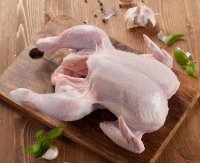 poulet 405x330 - Poulets