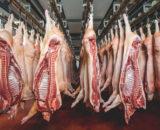 AdobeStock 130347499 160x130 - Roti de porc à l'épaule